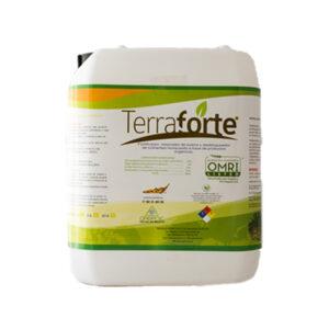 terraforte